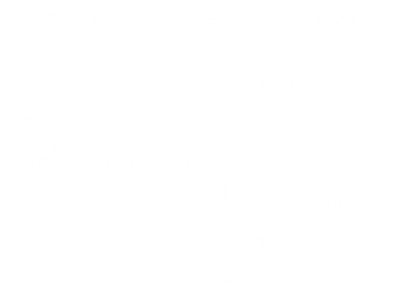 Practitioner Courses